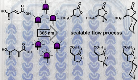 Continuous-flow preparation of g-butyrolactone scaffolds from renewable fumaric and itaconic acids under photosensitized conditions