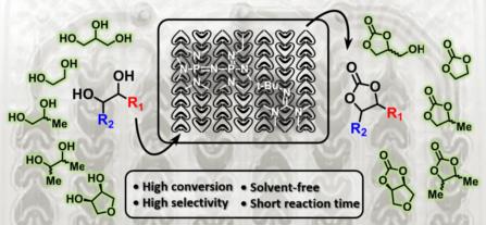 [2018] Solvent-free organocatalytic [447x269]